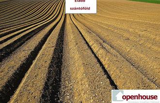 Eladó Mezőgazdasági