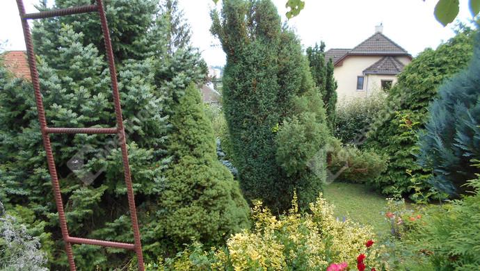 24. kép | Eladó Családi ház, Zalaegerszeg (#131587)
