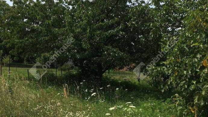 2. kép | Eladó Zárt kert, Tata (#140391)