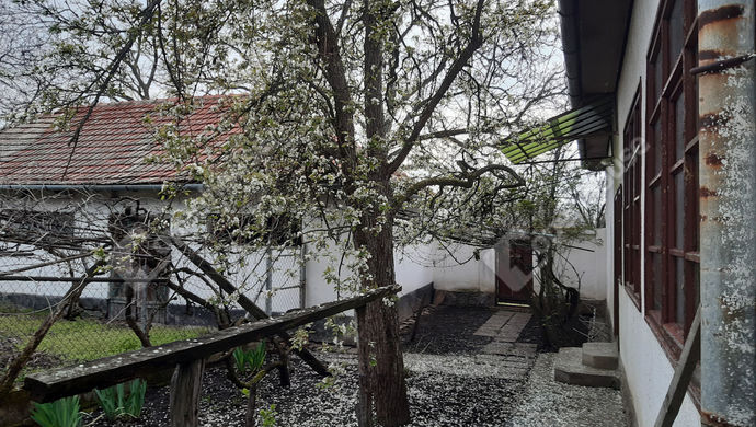 11. kép   Udvari homlokzat   Eladó Családi ház, Lőkösháza (#151193)