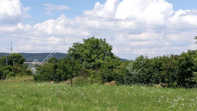 1. kép | Eladó Mezőgazdasági, Sopron (#134800)