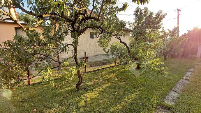 17. kép   Eladó Családi ház, Mosonmagyaróvár (#147632)
