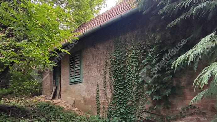 22. kép | Eladó Zárt kert, Zalaegerszeg (#153003)
