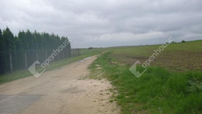 2. kép | Eladó Mezőgazdasági, Győrújbarát (#139062)
