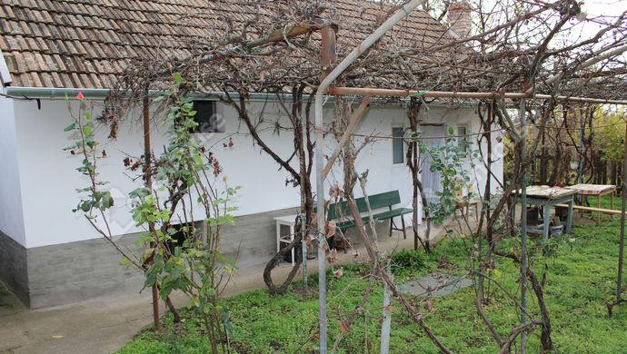12. kép | Eladó Családi ház, Röszke (#143345)