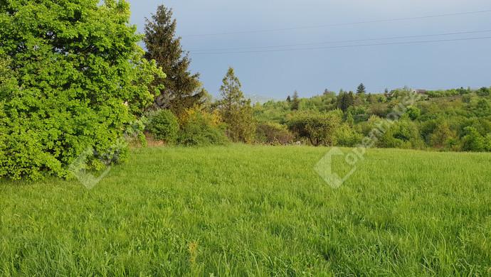 2. kép | Eladó Zárt kert, Miskolc (#129813)