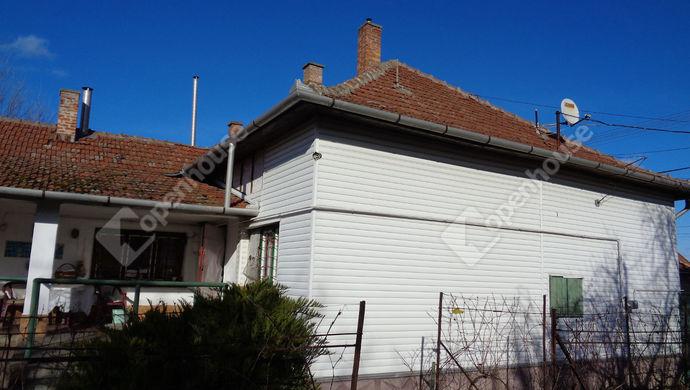 4. kép | Udvari domborzat | Eladó Családi ház, Vésztő (#149955)