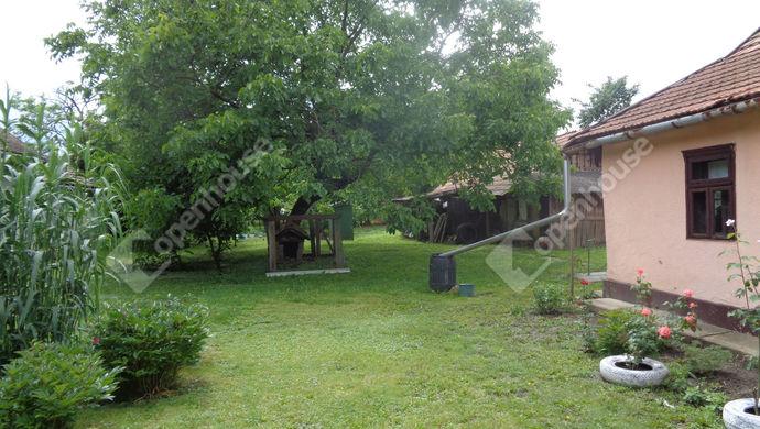 14. kép   kert részlet   Eladó Családi ház, Gyomaendrőd (#146568)