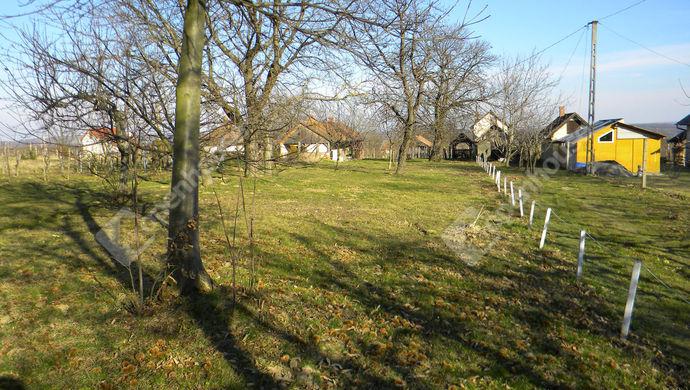 3. kép   Eladó Zárt kert, Bak (#144784)