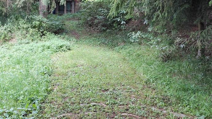 19. kép | Eladó Zárt kert, Zalaegerszeg (#153003)