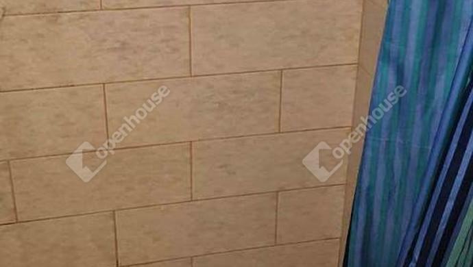 5. kép   Zuhanyzó   Eladó Családi ház, Tata (#130992)