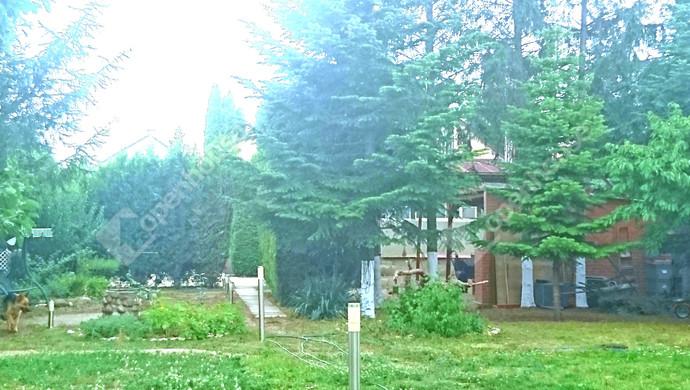 36. kép | Eladó Családi ház, Levél (#122225)