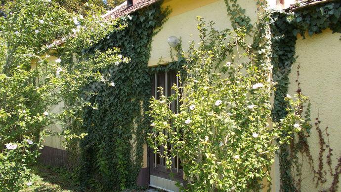 3. kép | Eladó Családi ház, Borgáta (#140530)
