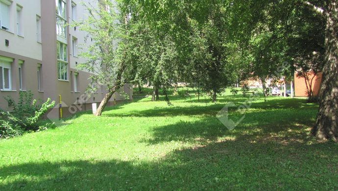 25. kép | Park | Eladó Társasházi lakás, Zalaegerszeg (#140563)