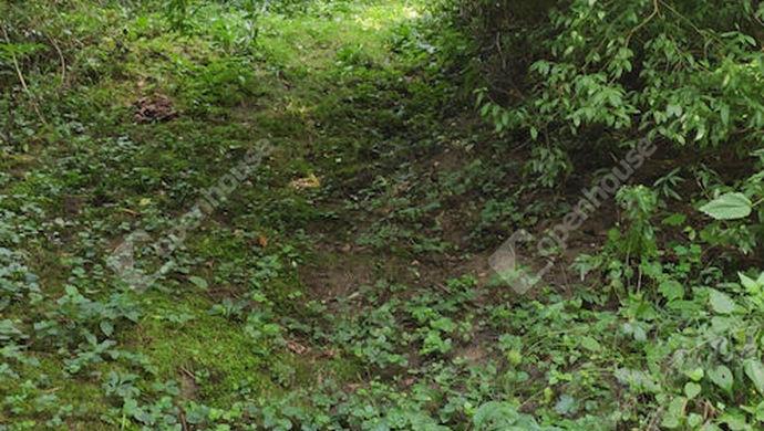 25. kép | Eladó Zárt kert, Zalaegerszeg (#153003)