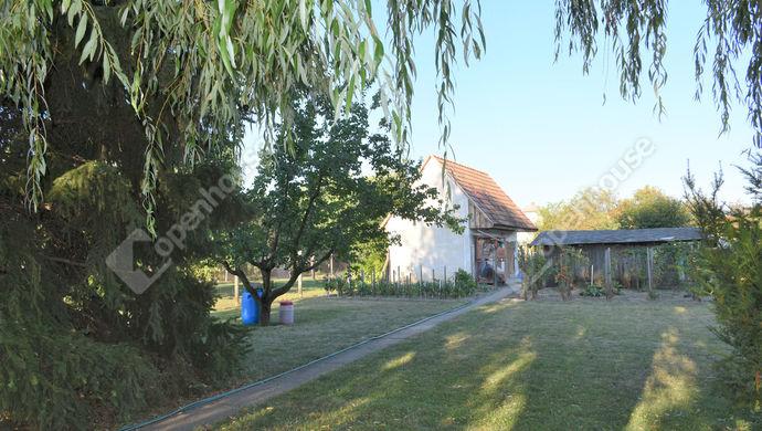 14. kép | Eladó családi ház Székesfehérváron.  | Eladó Családi ház, Székesfehérvár (#141316)