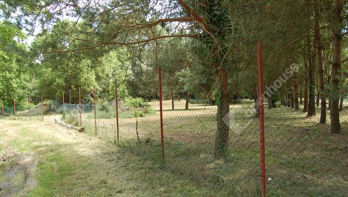 7. kép | Eladó Nyaraló, Muraszemenye (#152110)