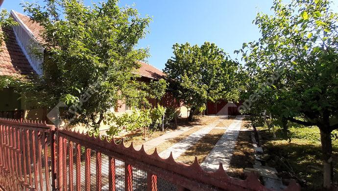6. kép | Udvar | Eladó Családi ház, Békéscsaba (#151631)