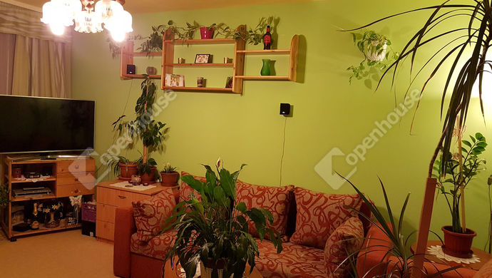 0. kép | szoba | Eladó Társasházi lakás, Békéscsaba (#143441)