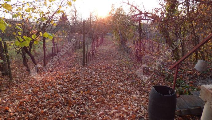 5. kép | Eladó Zárt kert, Páty (#142938)