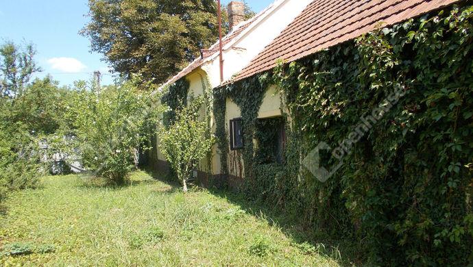 0. kép | Eladó Családi ház, Borgáta (#140530)