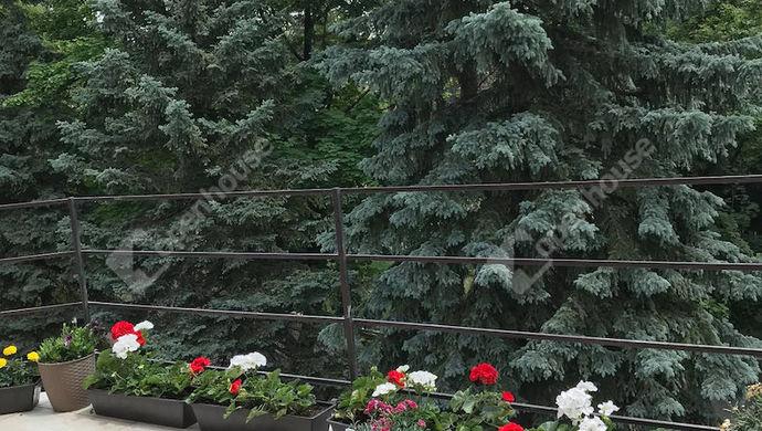 13. kép | Eladó Társasházi lakás, Balatonfűzfő (#146311)