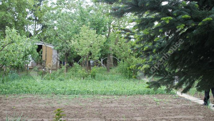 7. kép | Eladó Mezőgazdasági, Szombathely (#138777)