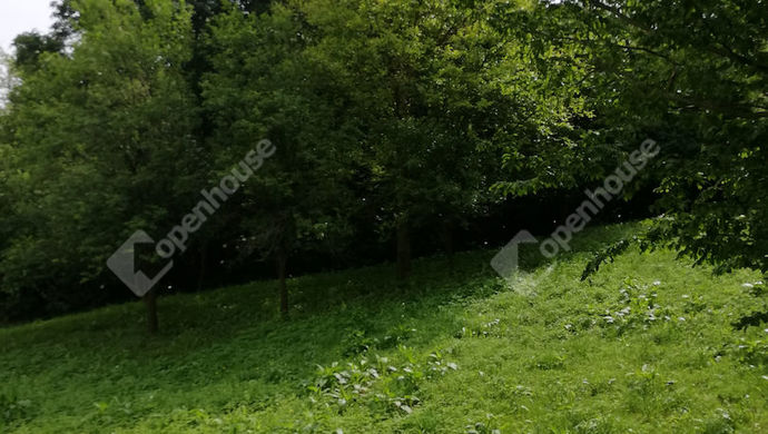 12. kép | Eladó Családi ház, Milejszeg (#139234)