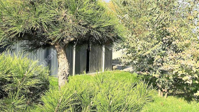 19. kép | Eladó Családi ház, Mosonmagyaróvár (#142435)