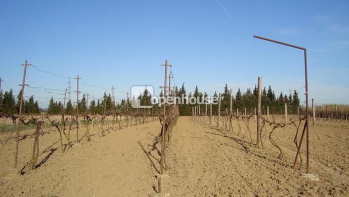 2. kép | Eladó Mezőgazdasági, Sárvár (#35278)