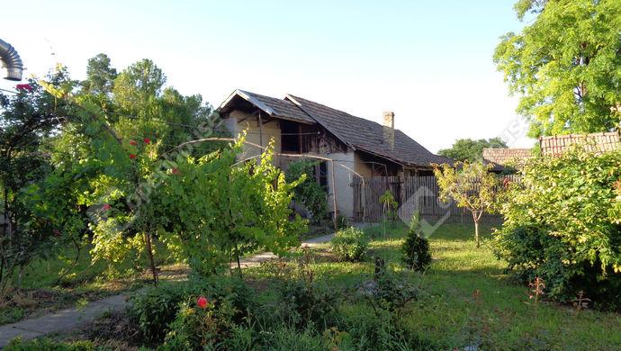 19. kép | udvar  részlet | Eladó Családi ház, Magyarbánhegyes (#146996)