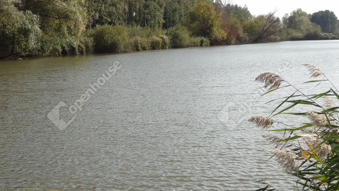 5. kép | Eladó Mezőgazdasági, Balatonszentgyörgy (#143074)