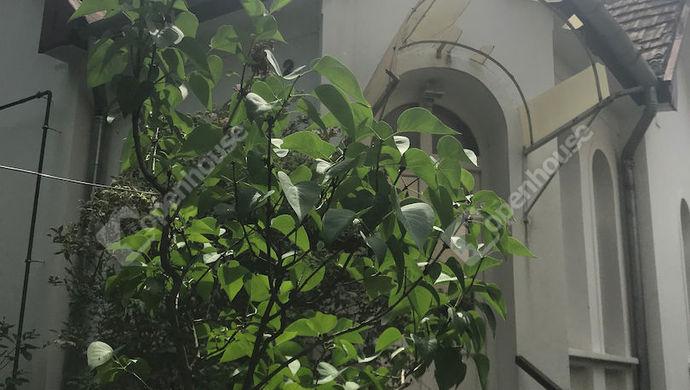 15. kép | Eladó Családi ház, Siófok (#139511)