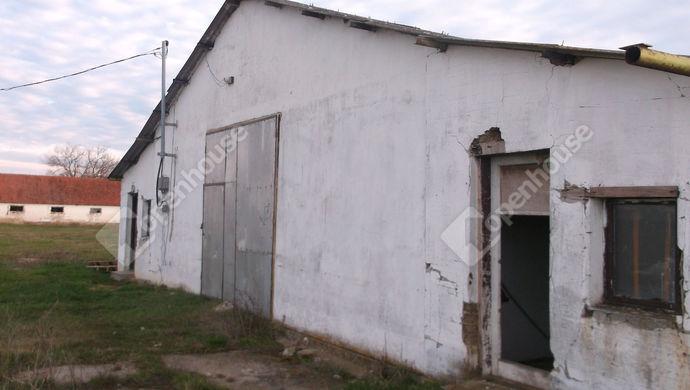 1. kép   Eladó Mezőgazdasági, Kaszaper (#145448)