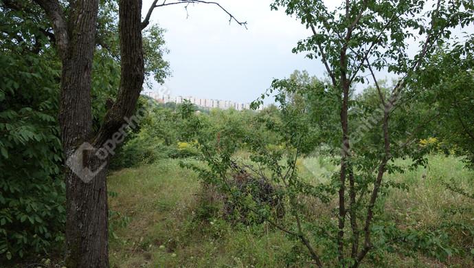 10. kép | Eladó Zárt kert, Miskolc (#133092)