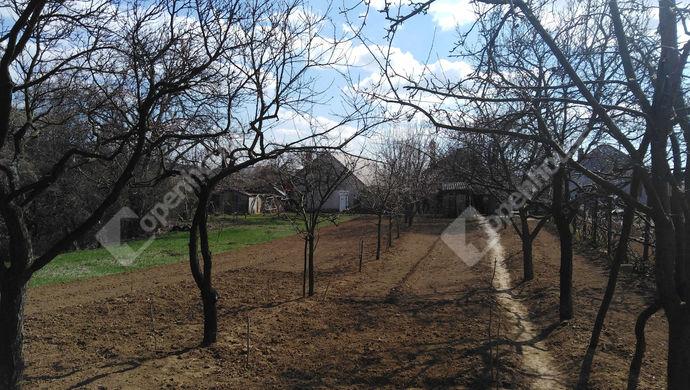 17. kép | Eladó Családi ház, Szár (#137767)