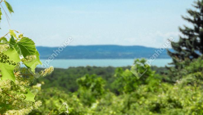 2. kép | Eladó balatoni panorámás  telek, szőlő Balatonudvari | Eladó Zárt kert, Balatonudvari (#130410)