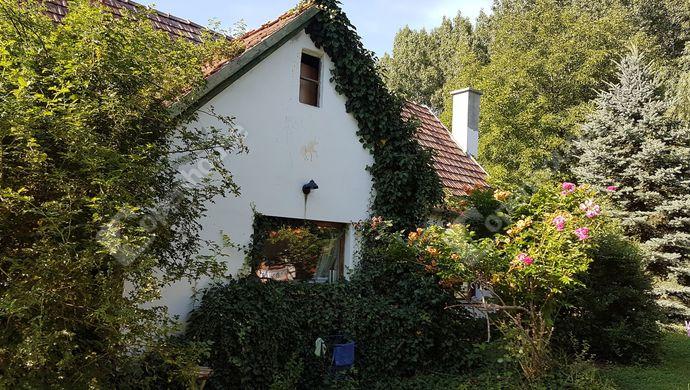 13. kép | Eladó Családi ház, Bakonypéterd (#139944)