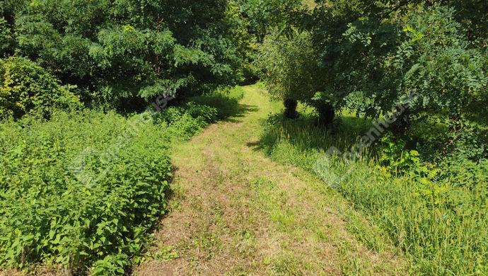 13. kép | Eladó Zárt kert, Zalaegerszeg (#153003)