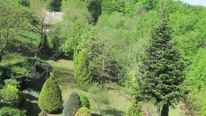 6. kép | Teraszos kert | Eladó Családi ház, Zalaegerszeg (#138745)