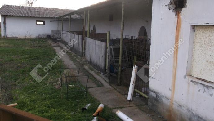 4. kép   Eladó Mezőgazdasági, Kaszaper (#145448)