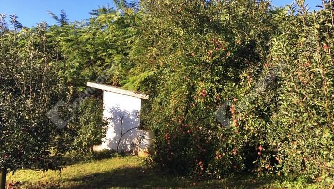 2. kép | Eladó Zárt kert, Tatabánya (#133759)