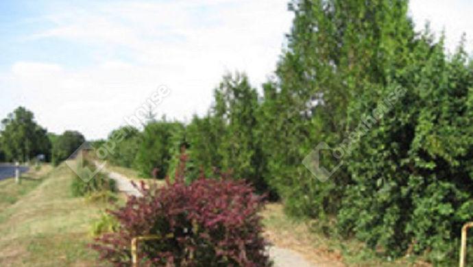 1. kép | Eladó Fejlesztési terület, Som (#152462)