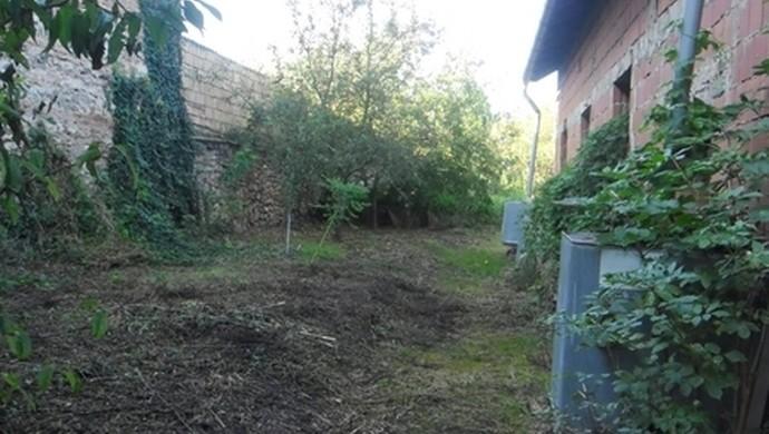 10. kép | Az udvar | Eladó Családi ház, Tata (#106618)