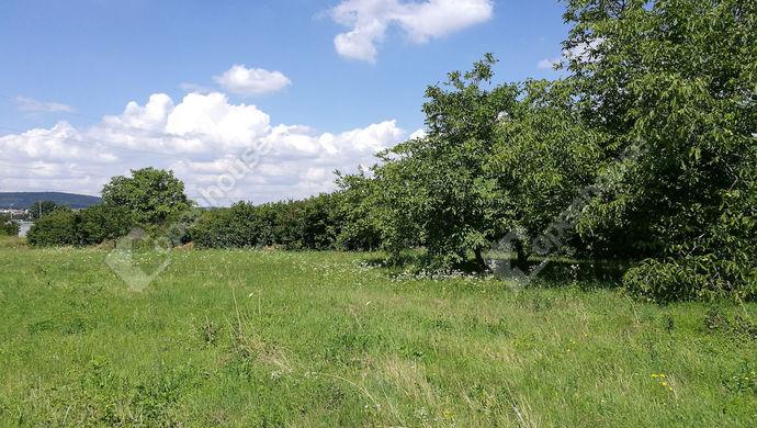 2. kép | Eladó Mezőgazdasági, Sopron (#134800)
