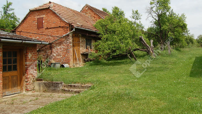 5. kép | Udvar melléképülettel | Eladó Családi ház, Gutorfölde (#146188)