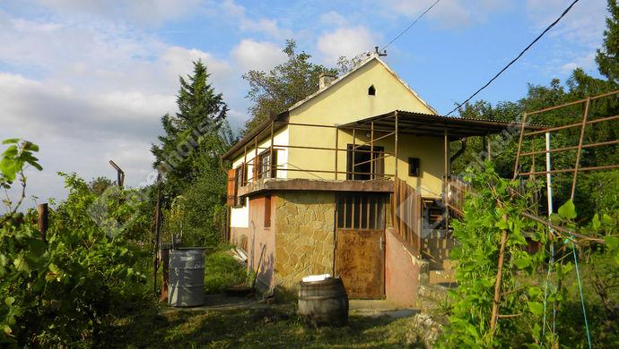 4. kép | Eladó Zárt kert, Zalaegerszeg (#141417)