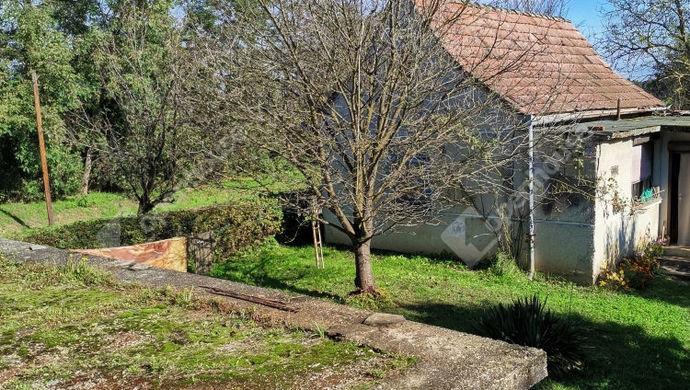 2. kép | Eladó Családi ház, Tarany (#148651)