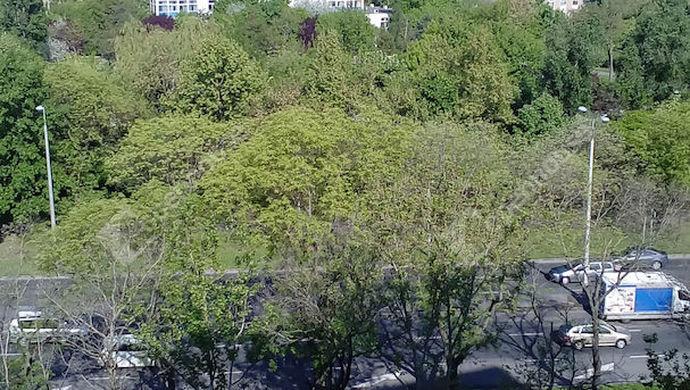 4. kép | Eladó Társasházi lakás, Budapest III. Ker. (#143538)