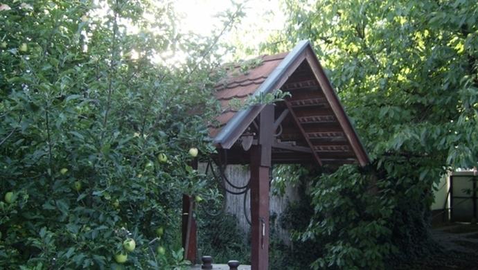 13. kép | Jászberény családi ház udvar | Eladó Családi ház, Jászberény (#79244)